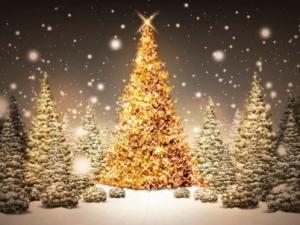 christmas-peace-402